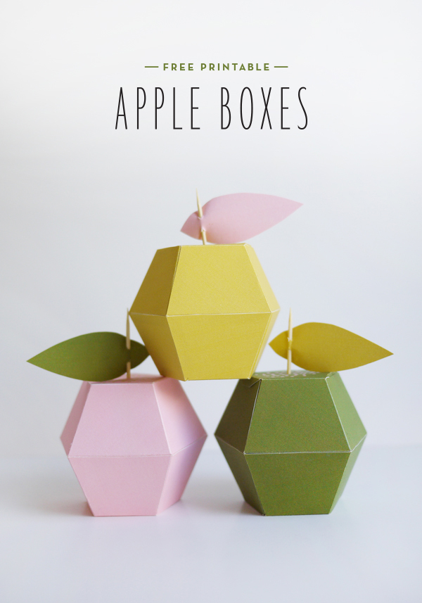 free paper box and bag templates apple boxes