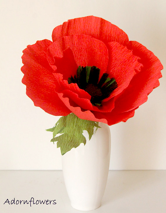 giant paper poppy flower