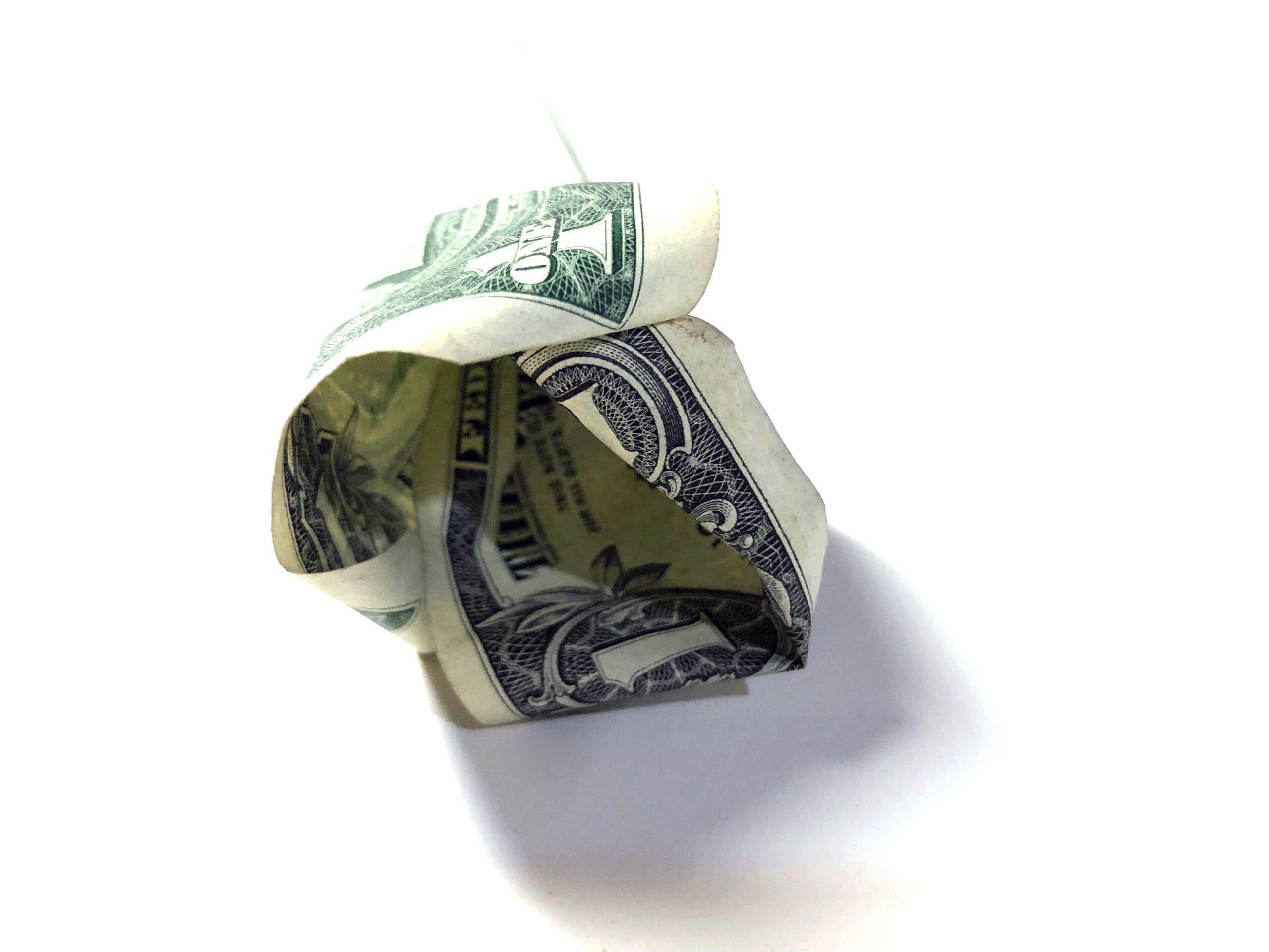 the center of the dollar money rose