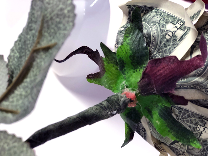 attached silk floral sepal to money rose
