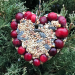Birdseed ornament with cranberry decoration